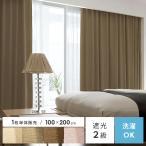 カーテン 遮光 遮光カーテン おしゃれ 北欧 遮光2級 シンプル ウォッシャブル アレルブロック モダン 日本製 100×200cmタイプ 1枚単体販売