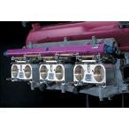 【ドゥーラック】スカイライン GT-R BNR34 6連スロットルボディ RB26DETT用 48パイ