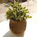 Yahoo!ANNIVERSARY WORLD〔新商品〕クルス16 木材をくりぬいて作った鉢カバー 園芸 ガーデニング