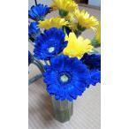 青のガーベラ花束 【母の日・父の日・誕生日・記念日のプレゼントに】