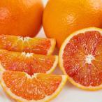ブラッドオレンジ【タロッコ】【規格5キロ】【サイズM.L混合】【発送は3月〜となります】