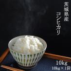 お米 29年産 コシヒカリ 10kg(5kg×2) (茨城県産) 白米 送料無料 通常発送