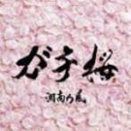 ■湘南乃風 CD【ガチ桜】10/2/10発売
