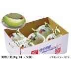 【お徳用】砂丘メロン(青肉 約5kg/4〜5個)(02-A)