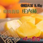 特別栽培庄内柿L玉 約2.5kg/秀品13玉(04-G)