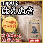 【28年産】山形県産 はえぬき 玄米 30kg(白米約27kg)(10-Q)