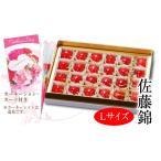 母の日温室さくらんぼ佐藤錦 チョコ紙箱24粒 約150g Lサイズ(64-A)