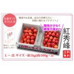 友達ギフトさくらんぼ紅秀峰バラ詰約1kg 2Lサイズ(67-T)