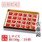 温室さくらんぼ佐藤錦 チョコ紙箱24粒 約150g Lサイズ(70-F)