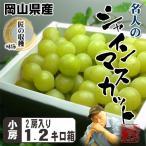 テレビで紹介されました 送料無料 岡山県産 皮ごと食べられて種もない贈答用 シャインマスカット1.2kg化粧箱