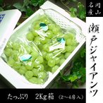 送料無料 岡山県産 瀬戸ジャイアンツ 2〜4房/箱(約2kg)ご自宅用  お供え