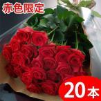 農家直送 バラの花束ギフト20本