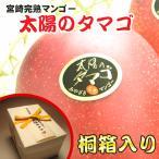 JA西都 宮崎 完熟マンゴー太陽のタマゴ2Lサイズ3玉(桐箱入り)