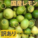 訳あり レモン 10kg 【和歌山県産】