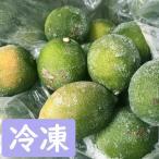 訳あり 冷凍レモン 10kg 【和歌山県産】