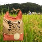 【30年産】私のおじいちゃんのお米(キヌヒカリ)3kg【和歌山県産】