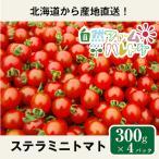 自然栽培のステラミニトマト 300g×4パック (約1.2kg) 自然ファームハレトケ 北海道産 固定種 種子消毒なし 自家採種