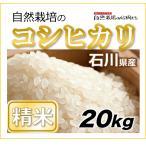 【精米20kg】自然栽培のコシヒカリ 石川県 もっともポピュラーなお米の品種