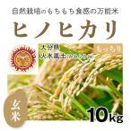 玄米10kg「自然栽培ヒノヒカリ」(大分県)火水風土(かみふうど) 令和元年度