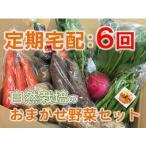 【定期宅配:6回】自然栽培 旬の野菜セットおまかせコース