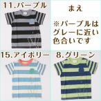 キッズ 子供服 Tシャツ 半袖 『ワニボーダーTシャツ』 メール便送料無料 子ども服