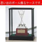 ホールインワン記念 ホールインワントロフィー B-9101:ホールインワンの記念ボールを飾れる記念品