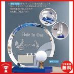 ホールインワン記念 BW2525:ホールインワンの記念ボールを飾れる お祝い用の記念品 ホールインワントロフィー