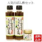 【送料込】シークヮーサーぽん酢2本&シークヮーサーこしょう1個 セット 島一番 島唐辛子 送料無料 柚子胡椒