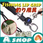 フィッシュグリップ フィッシュキャッチャー 魚掴み器 計測 重量 長さ スケール付き 釣り 軽量 コンパクト ステンレス製 記念撮影 釣り用具 アウトドア ad118
