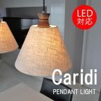 ペンダントライト 北欧 おしゃれ モダン レトロ 照明器具 照明 間接照明 天井照明 LED対応 Caridi(カリディ)