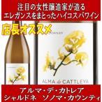 Yahoo!ワインと洋酒のヴァミリオンプラチナム フレグランス No.8 アップル&アマレット 750ml (ラメ入り スパークリング ワイン フルーツフレーバー) (PLATINVM FRAGRANCES)