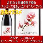 (オーパス ワンと肩を並べる評価) ヴァイン クリフ カベルネ ソーヴィニヨン ナパ ヴァレー 2012年 750ml (赤ワイン アメリカ カリフォルニア)