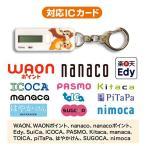 nocoly key holder  Disney Ver.   チップ デール  BP-NOKH CD