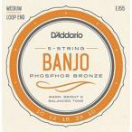 DADDARIO 0019954910891  10個 D& 039 Addario ダダリオ バンジョー弦 フォスファー Medium 5弦 .010-.023 EJ55