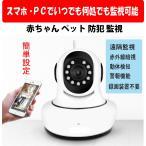 一番売れている 防犯カメラ ウエブカメラ スマホ・PCで遠隔監視
