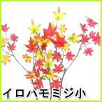 (造花・秋)イロハモミジ小/もみじ・紅葉|9747