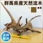 流木 販売 群馬 天然木 インテリア 大型  ryuboku-012