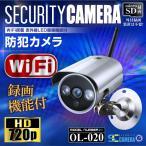 防犯カメラ SDカード録画 屋外 強力赤外線 暗視カメラ 監視カメラ (OL-020) P2P 24時間常時 録画 録画装置内蔵
