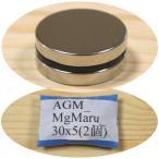 ネオジム 磁石 ネオジウム 強力 永久 マグネット 丸型 30x5mm 2個 密度 研究 加工 モーター 磁束密度 磁力 ガウス