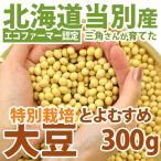大豆 北海道産 とよむすめ 300g