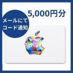 iTunes Card アイチューンズカード 5,000円分 [Eメール通知専用]  Apple プリペイドカード  コード通知