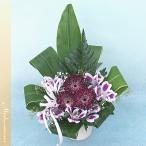 Yahoo!バラ プレゼント アルトルミナーレヨーロッパスタイルアレンジメント ル・フルール マネリ