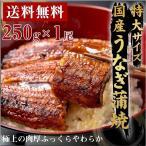 ウナギ 鰻 うなぎ 蒲焼き 国産 ウナギ 蒲焼き 250g 1尾 特大 父の日 丑の日 鰻 ギフト プレゼント うな重 うな丼 ひつまぶし
