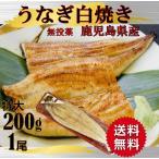 国産うなぎ 白焼き 鰻白焼き ウナギ 200g 1尾 特大 父の日 丑の日 魚介類、海産物 プレゼント うな重 うな丼 ひつまぶし