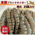 有頭ブラックタイガー 海老 えび 25尾 1.3kg 大容量 おせち えびフライ ぷりぷり