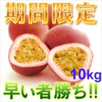訳ありパッションフルーツ10kg パッションフルーツ10kg 時計草 奄美大島