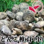 大分県産 どんこ椎茸(小)[80g]