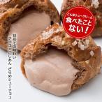 シュークリーム ざらめシューチョコ10個入り ギフト