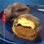 あすつく プレミアムチョコシュー  濃厚 チョコレート クリーム スイーツ