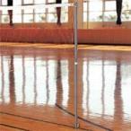 FLAP 仲條 バドミントン支柱 体育館用 34mm 激安格安バーゲンセール特価企画 FLP4605 体操 ダンスその他